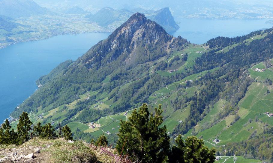 Blick vom Gipfel der Rigi Hochflue auf den Gersauerwstock - 1452 M