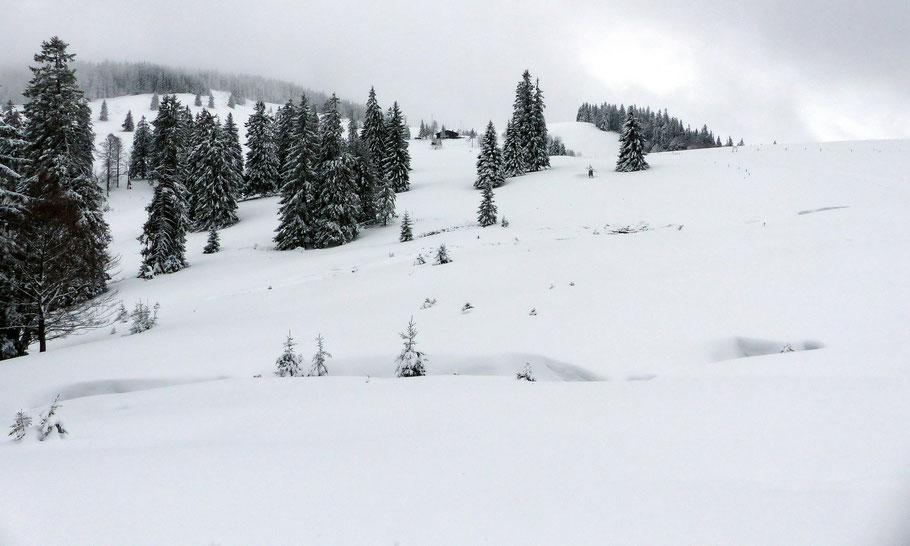 Blick auf die Hochalmen des Rossrückens -  Links das Spießhorn, 1349 M - In der Mitte die Krunkelbachhütte, 1294 M - Rechts der Milchberg, 1293 M