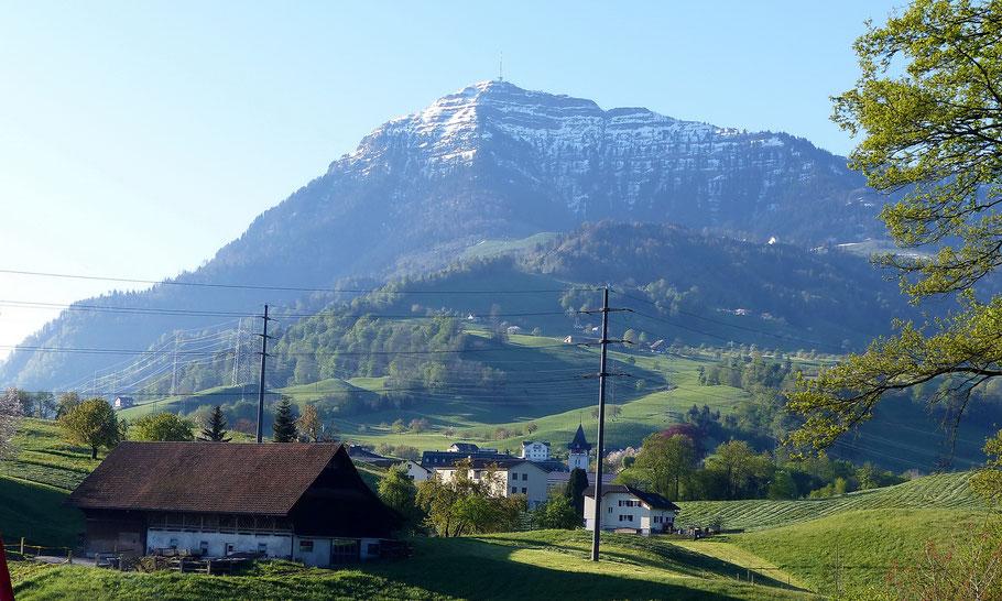 Blick von Küssnacht - 455 M auf Rigi Kulm - 1798 M