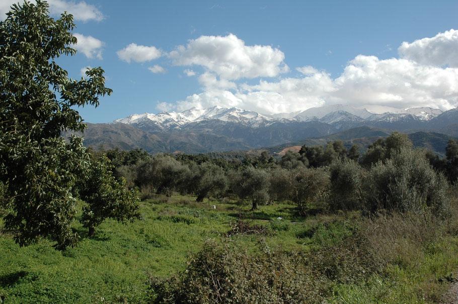 Foto: Blick auf die weißen Berge (Februar 2006)