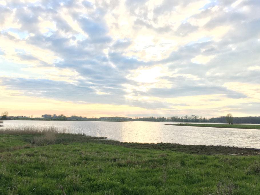 Die Üselitzer Wiek ist ein Boddengewässer auf der Insel Rügen