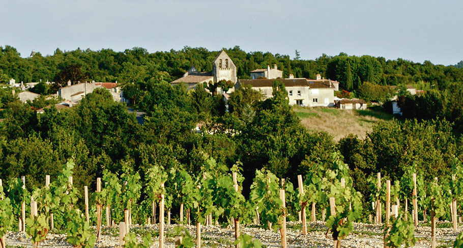 Haux, Gironde (33). Projet d'aménagement urbain et d'habitat participatifs