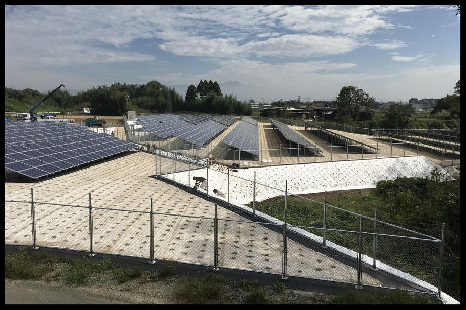 太陽光の下地処理