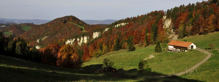 Bergrestaurant Vogelberg Lauwil
