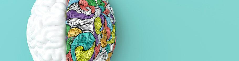 Plakativ dargestelltes Gehirn mit weißer und bunter Gehirnhälfte. Wissenschaftlich fundiert analysieren und coachen.