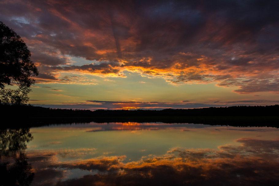 Sonnenuntergang im Spreewald