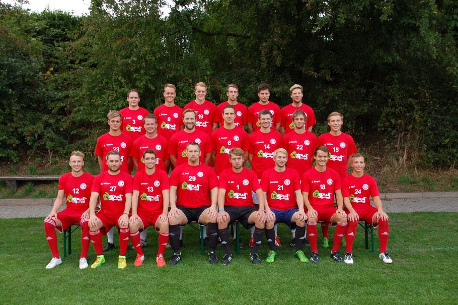 Gettorfer Sc Liga Saison 2013-2014