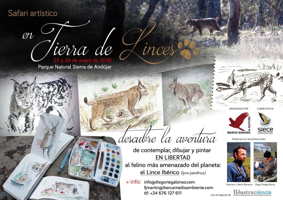 Safari Artístico EN TIERRA DE LINCES, Parque Natural Sierra de Andújar taller de ilustración naturalista wildlife art. Diego Ortega Alonso