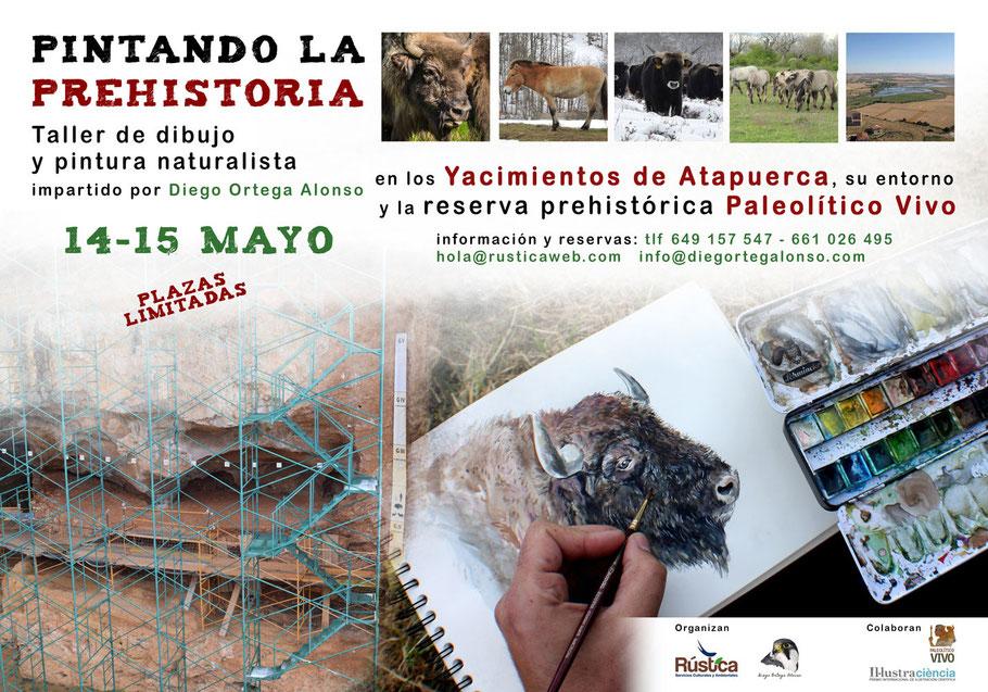 Pintando la Prehistoria taller de ilustración científica y pintura naturalista en los Yacimientos de Atapuerca, Paleolítico Vivo y su entorno, por Diego Ortega Alonso