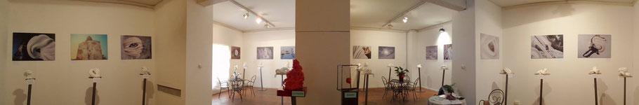 studio fotografico bologna arte esposizione eventi