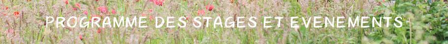stage initiation permaculture, permaculture, OSBD, psycologue, accompagnement, permaculture humaine, nature, ressourcementt, communication consciente, communication non violente, la roche sur yon, vendée, pays de la loire