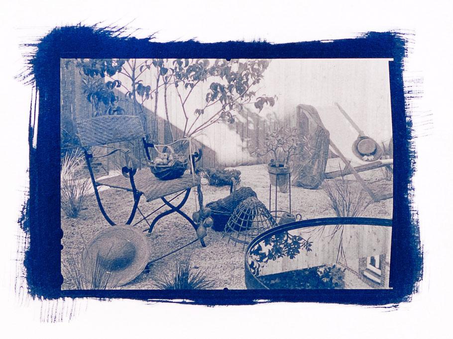 Été 2016 - Dans le jardin de Sténop'Amy - Cyanotype sur papier COT 320