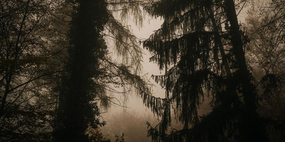 Braunenberg Aalen Wasseralfingen wandern freizeit Stift und Linse Blog