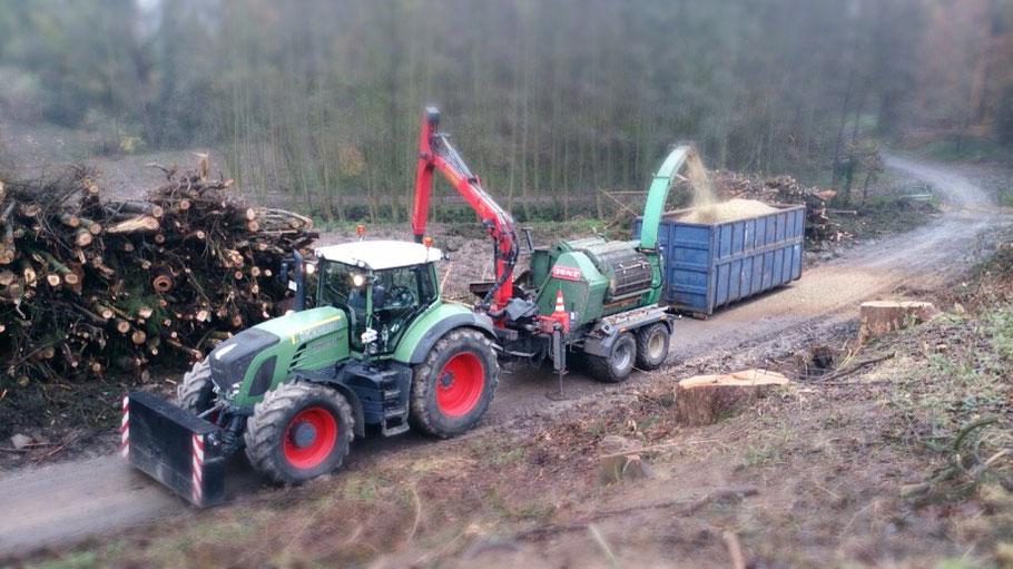 Das Foto zeigt die Verarbeitung von Holzstämmen in Holzhackschnitzel an einem Waldgebiet.