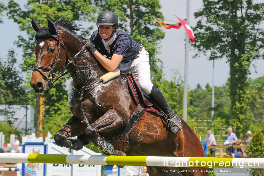 Pferdesporttage Aarberg Springreiten