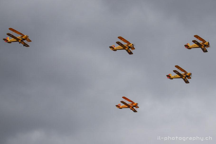 Bückersquadron Jungmann Jungmeister Thun Airshow