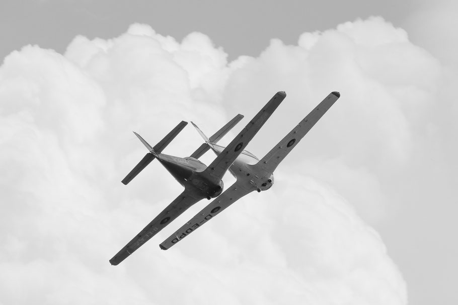 Zwei Piaggio P.149 beim Formationsflug. D-EDPO
