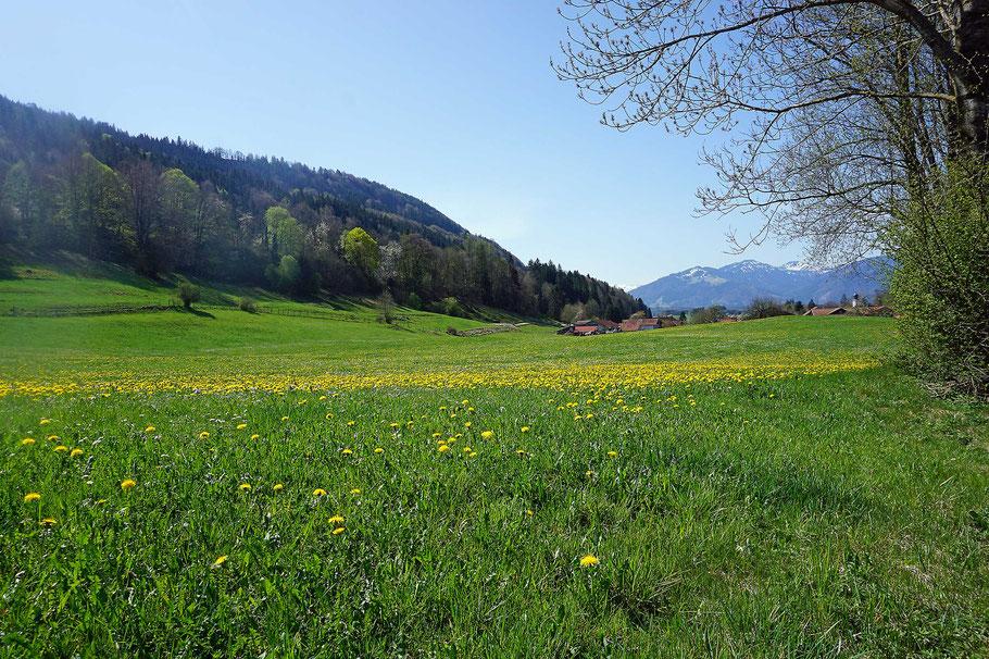 Rottach und Rottachberg im Frühling