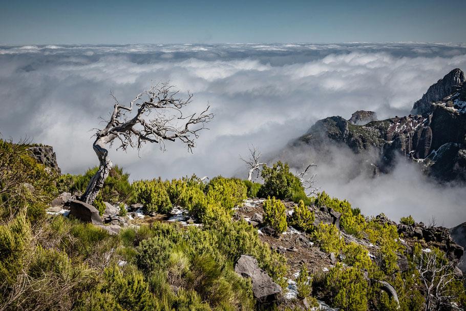 Pico Ruivo, Fotoreise Madeira, Johannes Kowalewski