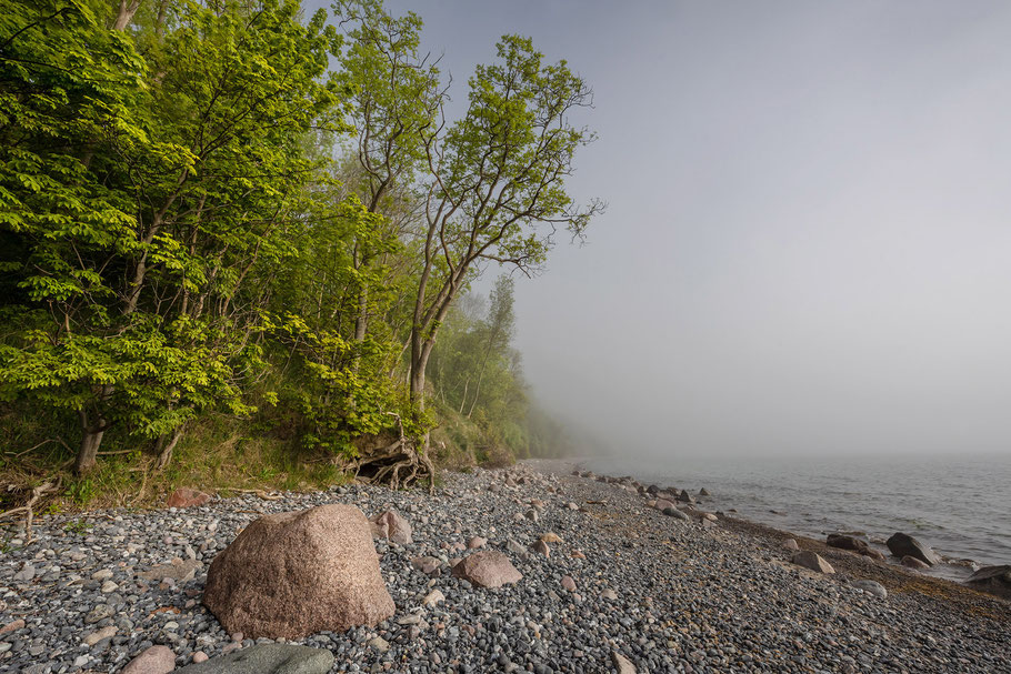 Nebel in Vitt, Kap Arkona