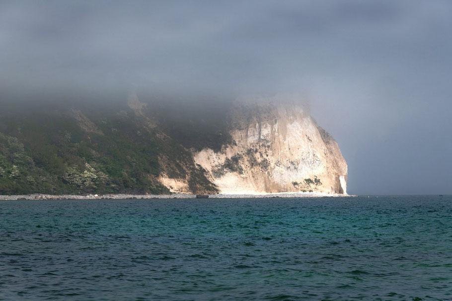 Kreisweküste im Nebel, Kap Arkona