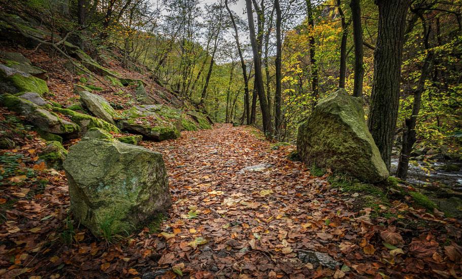 Fotoreisen in wunderschöner Natur - komm mit ins Fotoabenteuer