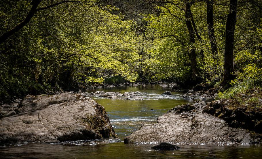 River Neath - auf dem Weg zu den Wasserfällen