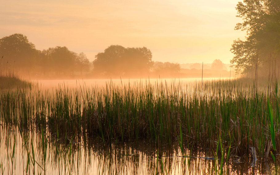 Kühnauer See, Dessau