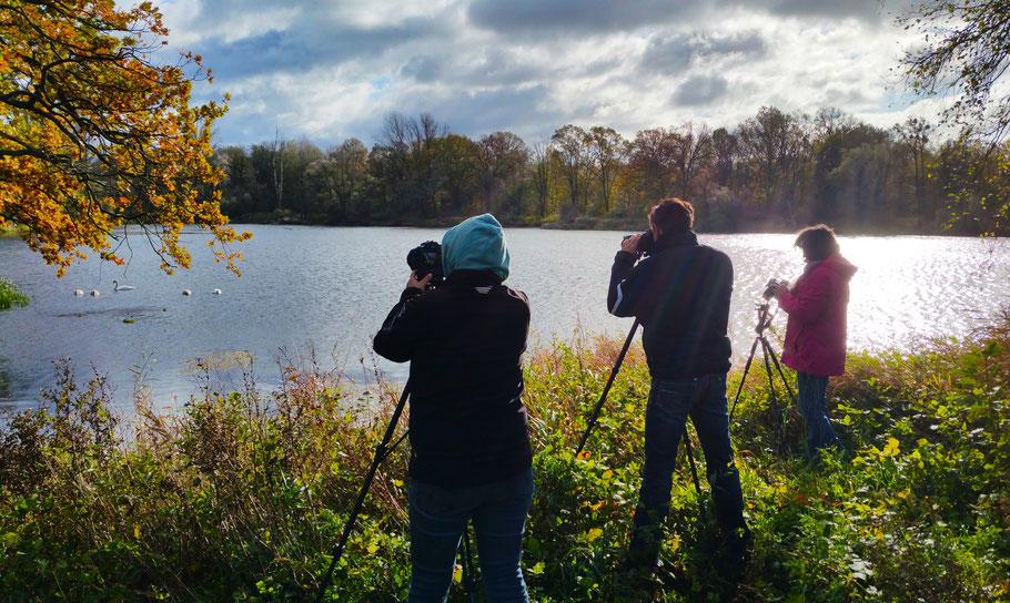Geburtstagsgeschenk, Fotoworkshop Dessau-Wörlitzer Gartenreich im Herbst mit Sebastian Kaps
