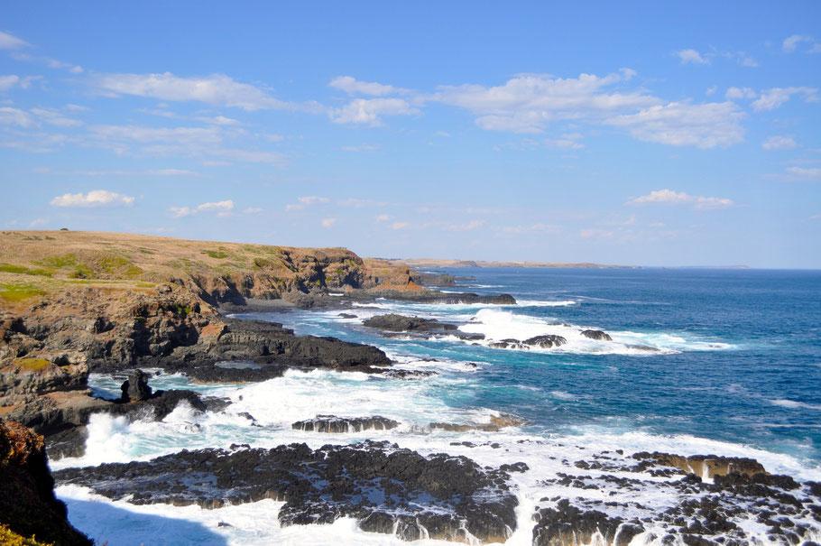 The Noobies, Phillip Island