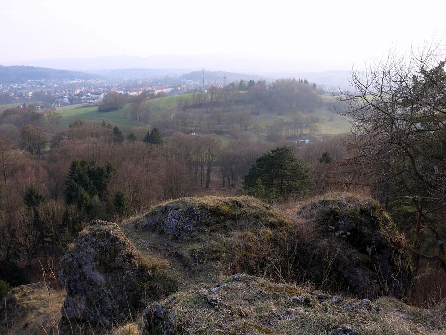 Aufnahme von einer Anhöhe aus. Blick auf den Wald, einen Hügel mit Wiese, seitlich Häuser und Berge Bad Liebenstein und Umland.