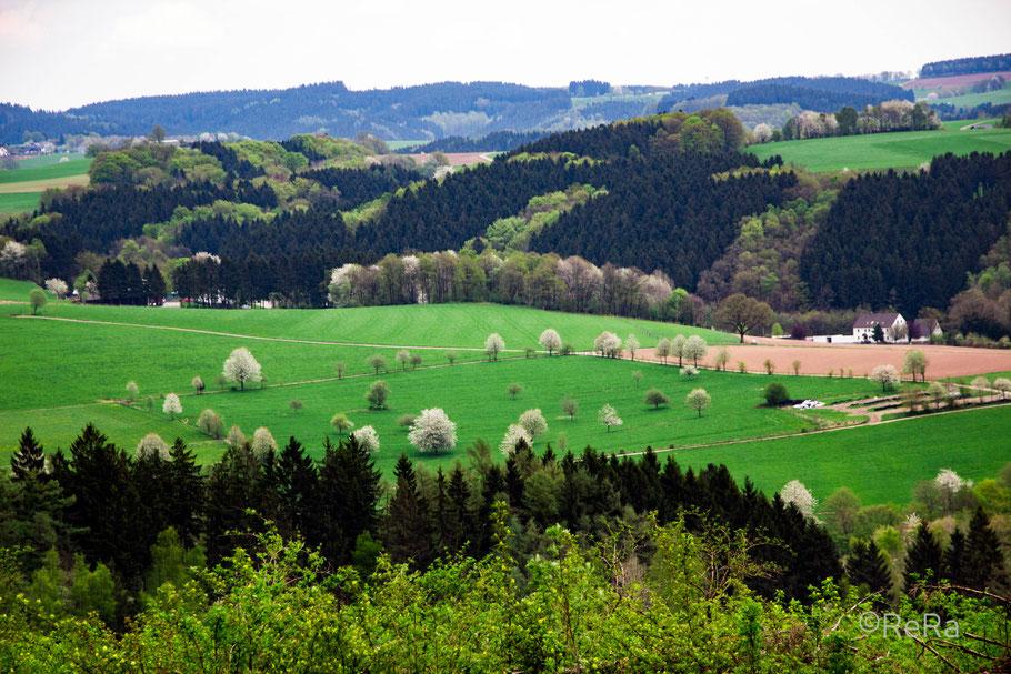 Blick über die Landschaft / Reichshof