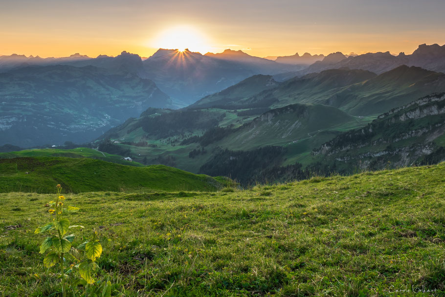 Sonnenaufgang auf dem Fronalpstock