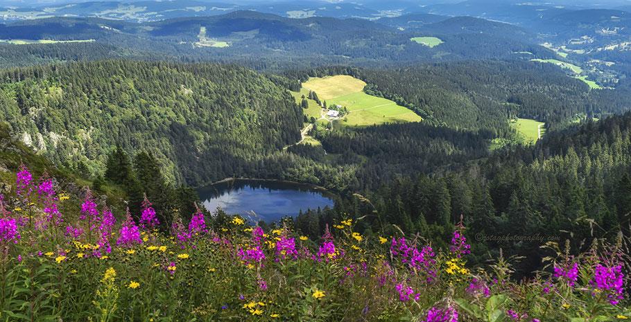 Viaje fotográfico a la Selva Negra - Alemania