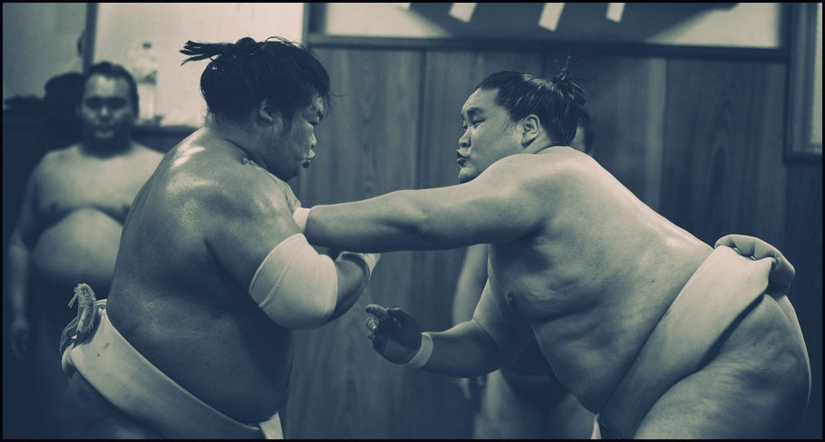 Ozeki Terunofuji (right) trains with Homarefuji — John Gunning, Inside Sport: Japan, Feb 7th, 2017