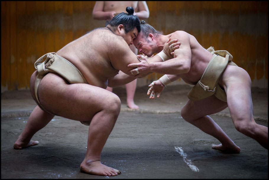 Takayasu (left) has a chance to take his first title - John Gunning, Inside Sport: Japan, Dec 28, 2013