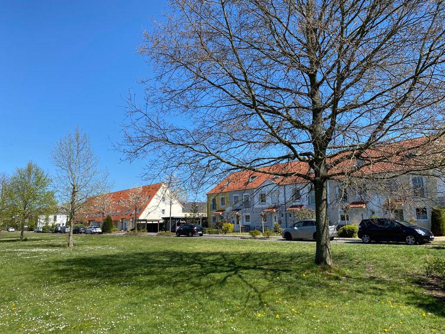 Wiese mit Wohnhäusern an der Albert-Schweitzer-Straße, Bremen Obervieland (Foto: 21.04.2020, Jens Schmidt)