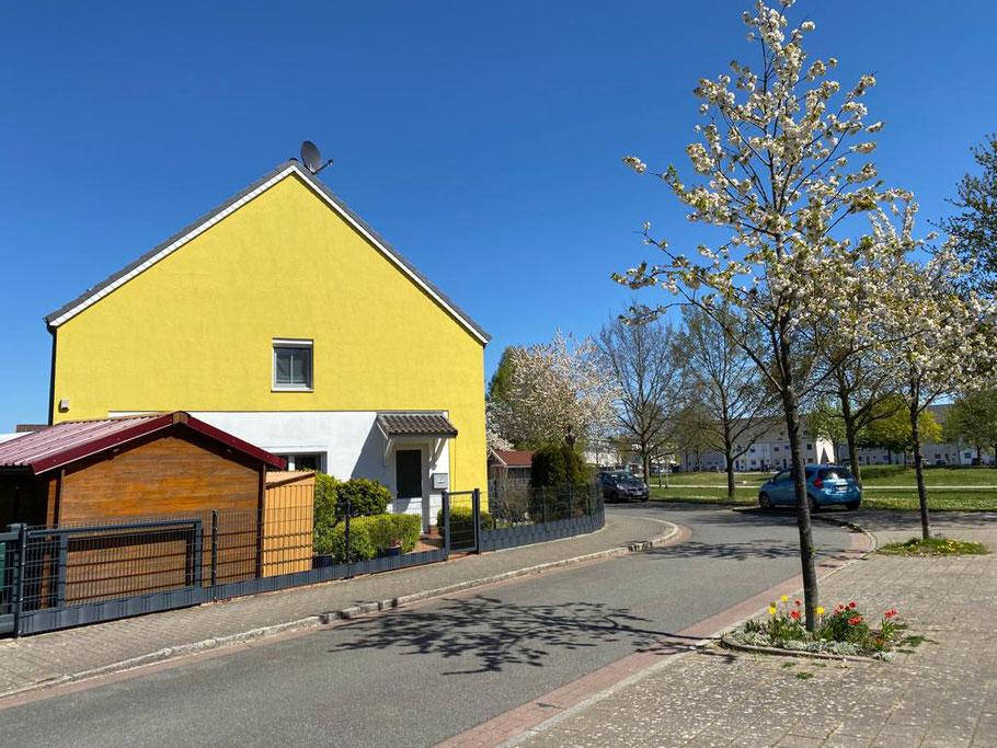 Kleine Blumeninsel, gelbes Haus - farbiges Leben in Bremen Obervieland, Mathilde-Plate-Straße (Foto: 21.04.2020, Jens Schmidt)