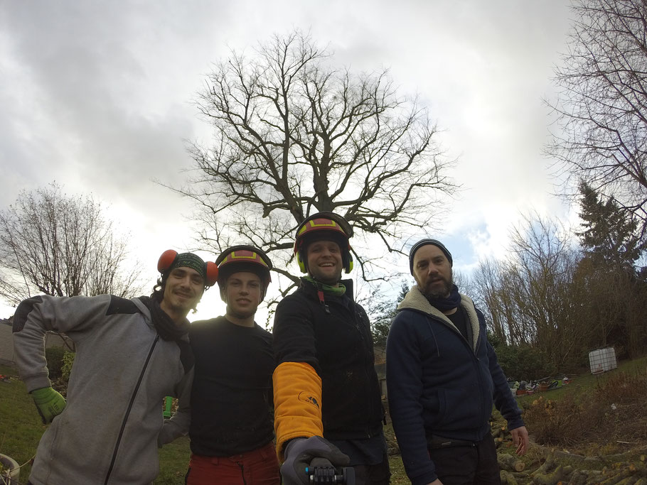 Une équipe de professionnels prête à intervenir dans vos arbres!