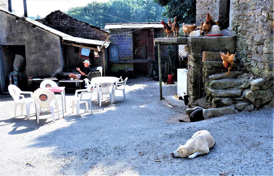 Ein Kaffeestopp am Bauernhof