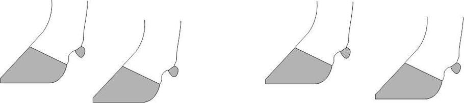 Vier Kuhklauen symbolisieren die vier Säulen der Klauengesundheit