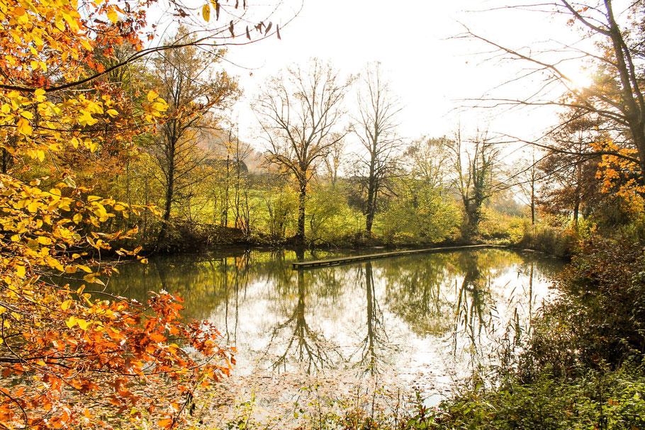 Herbst in der Steiermark, Natur, Frohnleiten