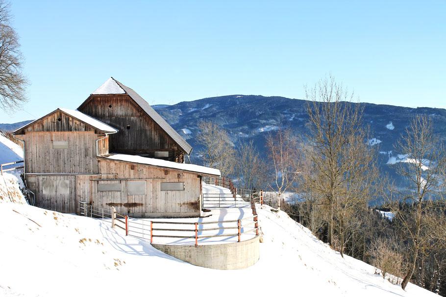Wintersport, Schlittenfahren in Schladming