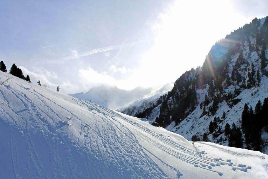 Wandern im Wildgerlostal, Tirol, Nationalpark Hohe Tauern, Schneeschuhwandern