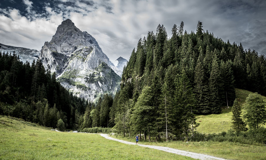 Wellhorn - Reichenbachtal
