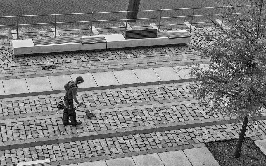 Ein typisches Bild nicht nur in Hamburg: Kleinstes Grün wird restlos entfernt!