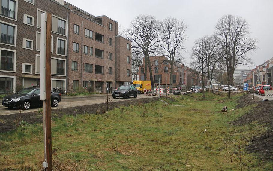 Noch bietet das Quartier Finkenau (Uhlenhorst) schöne artenreiche Brachflächen, auf denen Kinder spielen und so die Vegetation offen halten. (Foto: S. Hinrichs)