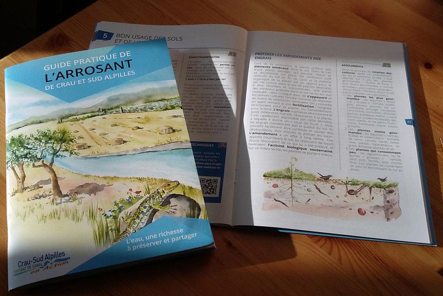 illustration, guide, biodiversité, panneaux, nature, naturaliste