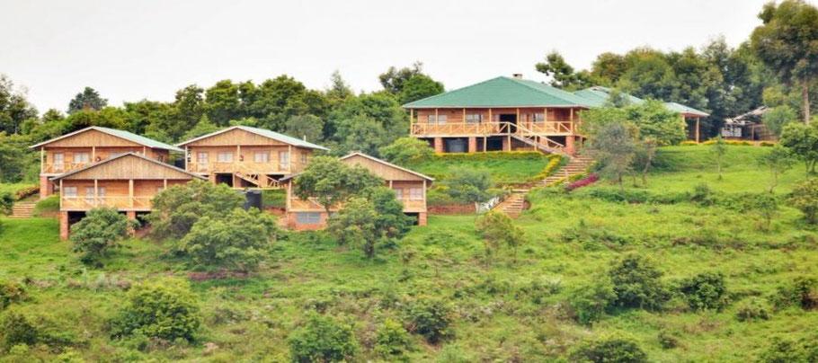 Ruhija-Gorilla-Safari-Lodge.jpg