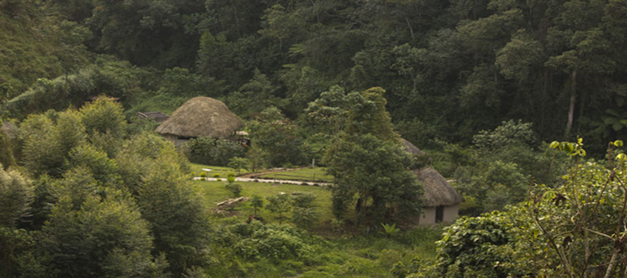 Nshongi-Camp.jpg